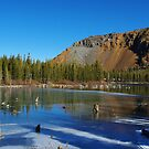 Lake, forest and mountains near Mammoth Lakes, California by Claudio Del Luongo