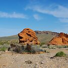 Rock formation, Valley of Fire, Nevada by Claudio Del Luongo