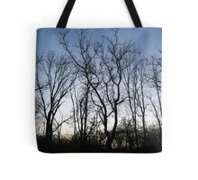 Forest Limbs  Tote Bag
