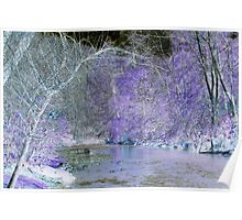 Riverside in Early Spring, Color Invert #2 Poster