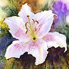 "Lily ""Muscadet"" (Lilium Orientalis Muscadet) by Jacki Stokes"
