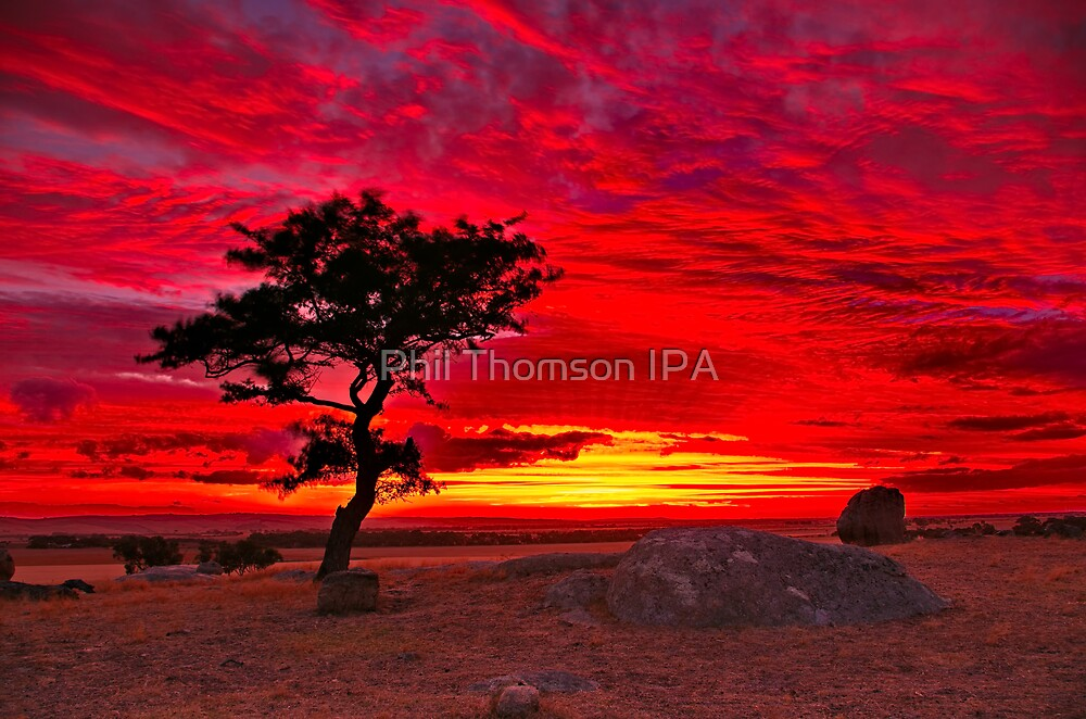 "‎""The Sky Is All Ablaze"" by Phil Thomson IPA"