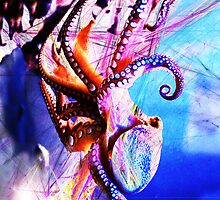 Funky Octopus by Extreme-Fantasy