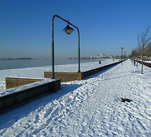 White Boulevard by Janone