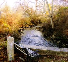 Sandwich Brook, Cape Cod, Massachusetts by Elizabeth Thomas