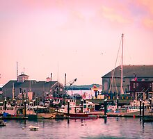 Provincetown Harbor, Cape Cod, Massachusetts by Elizabeth Thomas