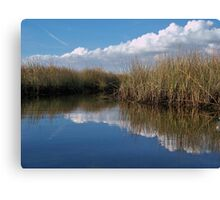 Sawgrass Water Sky and clouds 3 Canvas Print