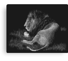 Old King - lion Canvas Print