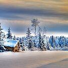 Winter scene by ilpo laurila