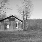 Cabin by Amaelanders