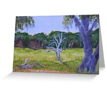 Colors of the Florida Greenway Greeting Card