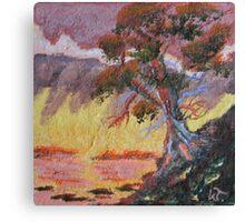 Cypress Sun Canvas Print
