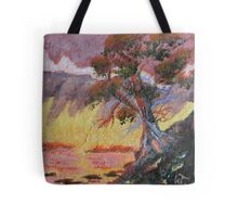 Cypress Sun Tote Bag