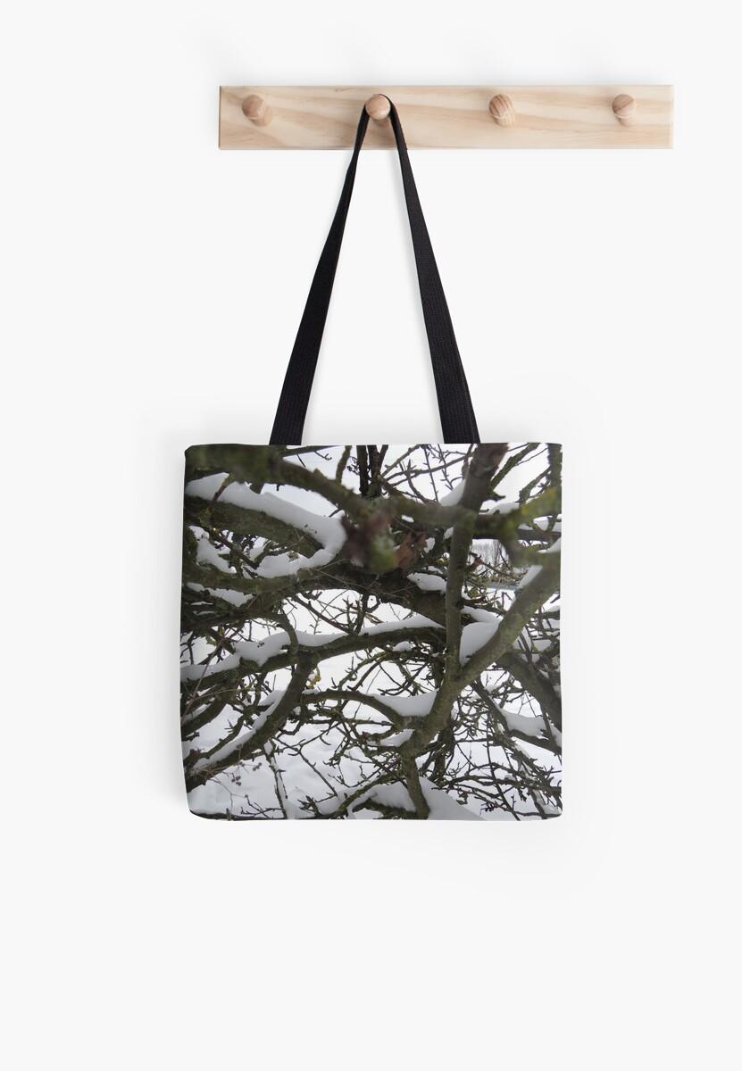 Through winter branches by CreativeEm