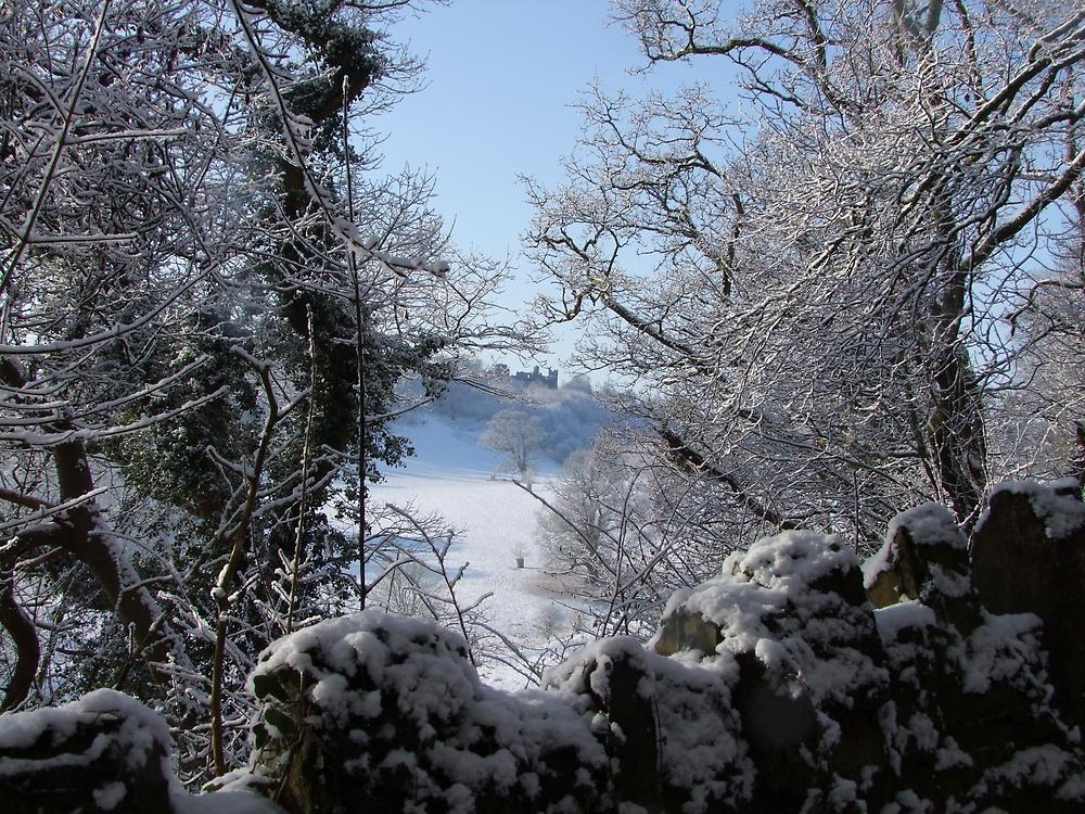 Dinefwr Castle Between Trees-01 by Pat - Pat Bullen-Whatling Gallery