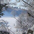 Dinefwr Castle Between Trees-01-detail by Pat - Pat Bullen-Whatling Gallery