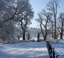 Dinefwr Castle in snow-01 by Pat - Pat Bullen-Whatling Gallery