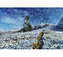 Winter path Photographic Print