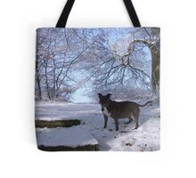 Dinefwr Castle the artist's dog in snow-01 Tote Bag