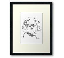 WWWD? Willow, Long Haired Weimaraner : Light Grey Framed Print