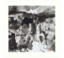 Storm over Canyon de Chelly Art Print