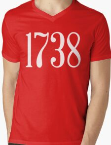 1738 Mens V-Neck T-Shirt