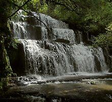 Purakaunui Falls  by Duncan Cunningham