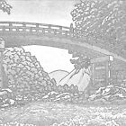 Kamibashi Bridge at Nikko, Japan by chawus