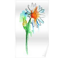 Daisy Watercolor Poster