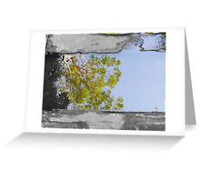 Tree reflection in water sc Greeting Card