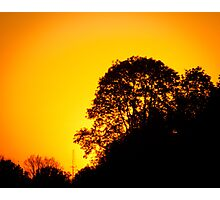 Orange Tree Sunset Photographic Print