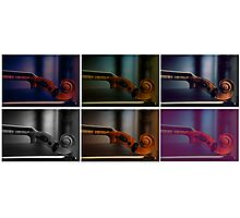 Musical Colors Photographic Print