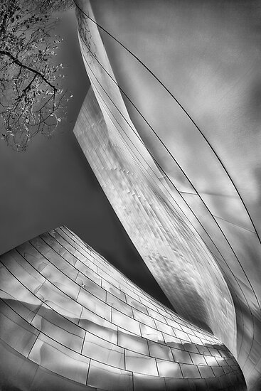 Walt Disney Concert Center II by Yves Rubin