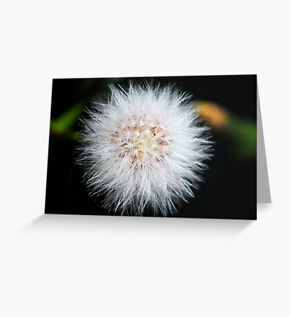 Fairy silk Greeting Card