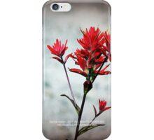 paintbrush wildflowers, Johnston's Ridge 3 iPhone Case/Skin
