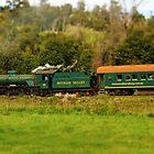 The Hotham Train by Todd Kluczniak