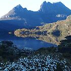 Cradle mountain early in the morning. by Esther's Art and Photography