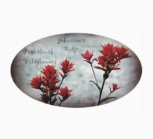 paintbrush wildflowers, Johnston's Ridge 3, oval Kids Clothes