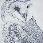 Barn Owl  by NatureLover81