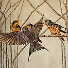 Swallow Family  by NatureLover81