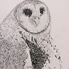 Owl by NatureLover81