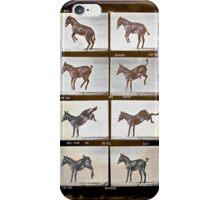 Muybridge Donkey iPhone Case/Skin