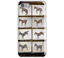 Muybridge Donkey iPhone Case/Skin