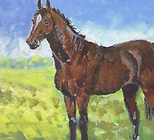 Australian Stockhorse  by Diana-Lee Saville