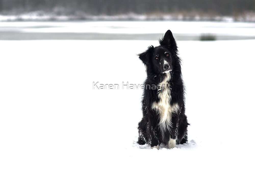 Snow Model by Karen Havenaar