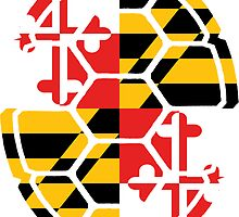Maryland Flag Shell by harringe
