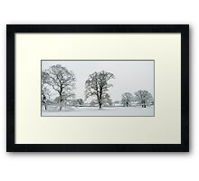 Snow Covered Treescape Framed Print