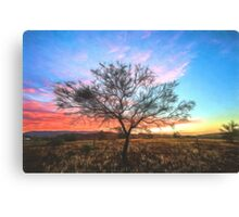 Outback Sunset (GO) Canvas Print
