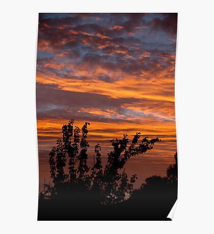 Fiery suburban sunset Poster
