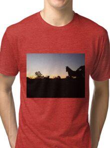 Sunset Friends Tri-blend T-Shirt